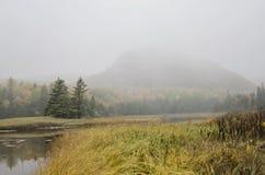Colmena del parque nacional del Acadia en niebla Imagen de archivo libre de regalías