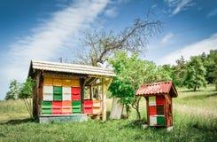 Colmena hecha en casa de la abeja Fotos de archivo