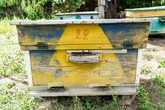 Colmena - la casa de abejas en el pecho de la naturaleza Apicultor del trabajo Producto curativo de la apicultura Mayo, miel de l Imagen de archivo libre de regalías