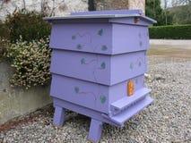 Colmena púrpura de WBC Imágenes de archivo libres de regalías