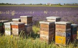 Colmena, Provence Francia Imágenes de archivo libres de regalías