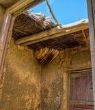 Colmena salvaje Foto de archivo