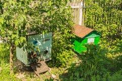 Colmenar, abejas de llegada Imagen de archivo