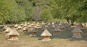 Colmenar con las colmenas de la abeja bajo la forma de pequeñas casas Fotos de archivo