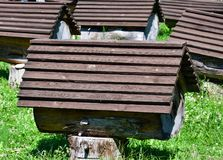 Colmenar con las colmenas de la abeja en Abjasia Imagenes de archivo