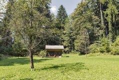 Colmenar con las colmenas en las montañas de Eslovenia Imagen de archivo