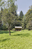 Colmenar con las colmenas en las montañas de Eslovenia Imagen de archivo libre de regalías
