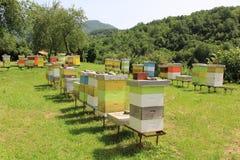 Colmenar de la abeja en un monasterio de la montaña Foto de archivo libre de regalías