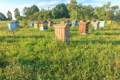 Colmenar de la granja con los beehouses multicolores Foto de archivo