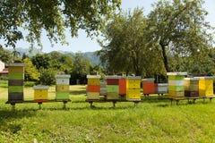 Colmenar del monasterio con muchas abejas Fotos de archivo libres de regalías