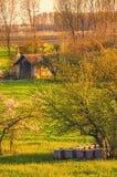 Colmenar en el prado Imagenes de archivo