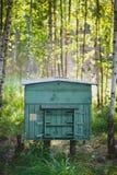 Colmenar en la madera Colmena de la abeja en el bosque Foto de archivo