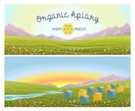 Colmenar en montañas alpinas de los prados Honey Farm Fotos de archivo libres de regalías
