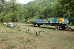 Colmenar movible, montado en un remolque del camión Imagen de archivo libre de regalías