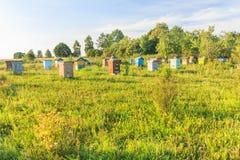 Colmenar rural de la granja con los beehouses multicolores Imágenes de archivo libres de regalías