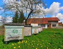 Colmenas coloreadas viejas en Polonia Fotografía de archivo