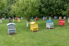 Colmenas coloridas Colmenas con las abejas en una granja de la miel Fotos de archivo libres de regalías