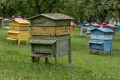 Colmenas coloridas Colmenas con las abejas en una granja de la miel Foto de archivo