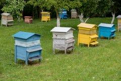 Colmenas coloridas Colmenas con las abejas en una granja de la miel Fotos de archivo