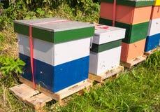 Colmenas coloridas de la abeja Fotos de archivo libres de regalías