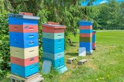 Colmenas coloridas de la abeja Imágenes de archivo libres de regalías