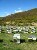 Colmenas coloridas en área de montaña Foto de archivo libre de regalías