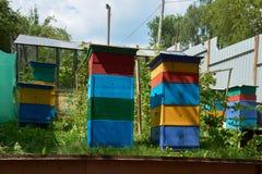 Colmenas coloridas en el jardín Foto de archivo libre de regalías