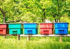 Colmenas coloridas en fila Fotografía de archivo