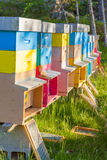 Colmenas coloridas en un campo Estación de verano Imagen de archivo libre de regalías