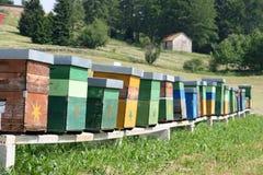 Colmenas coloridas por completo de abejas Imagenes de archivo