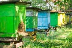 Colmenas con las abejas en campo Imágenes de archivo libres de regalías