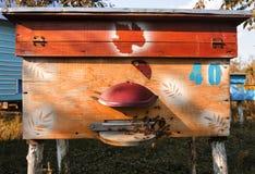 Colmenas con las abejas en una granja de la miel Imagen de archivo libre de regalías
