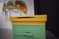 Colmenas de la abeja con las abejas que vagan foto de archivo libre de regalías