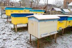 Colmenas de la abeja cubiertas con la nieve en un jardín, tiro horizontal al aire libre Foto de archivo libre de regalías