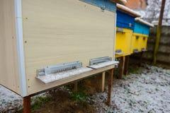 Colmenas de la abeja cubiertas con la nieve en un jardín, tiro horizontal al aire libre Foto de archivo