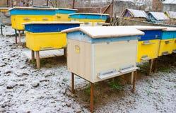 Colmenas de la abeja cubiertas con la nieve en un jardín, tiro horizontal al aire libre Imagenes de archivo