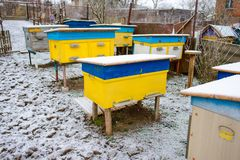 Colmenas de la abeja cubiertas con la nieve en un jardín, tiro horizontal al aire libre Fotos de archivo