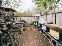 Colmenas de la abeja de la miel Imagenes de archivo