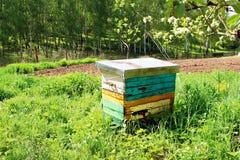Colmenas de la abeja de la miel en jardín de la primavera Imagen de archivo libre de regalías