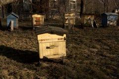 Colmenas de la abeja del color en primavera Fotografía de archivo libre de regalías