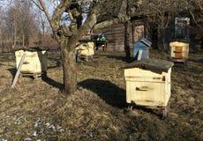 Colmenas de la abeja del color en primavera Foto de archivo libre de regalías