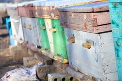 Colmenas de la abeja en el destino popular Imagen de archivo