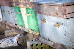 Colmenas de la abeja en el destino popular Fotografía de archivo