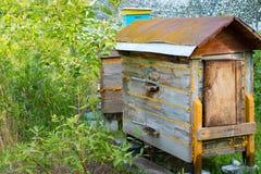 Colmenas de la abeja en fondo del verdor Las abejas recogen el polen Imagen de archivo libre de regalías