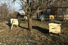 Colmenas de la abeja en primavera Fotos de archivo libres de regalías