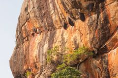 Colmenas de la abeja en la roca de Sigiriya Foto de archivo