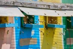 Colmenas de la abeja en un camión Imagen de archivo