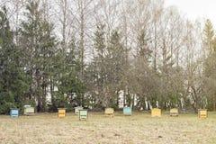 Colmenas de madera de la abeja en un jardín Imagen de archivo