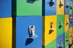 Colmenas de madera de las abejas Fotografía de archivo libre de regalías