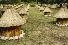 Colmenas de madera de la abeja del grupo con el tejado cubierto con paja Imagenes de archivo